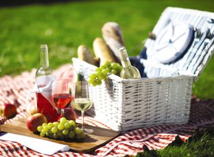 Picnic basket with wine, grapes and bread