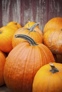 Selective focus image of Pumpkins with barn wall in background