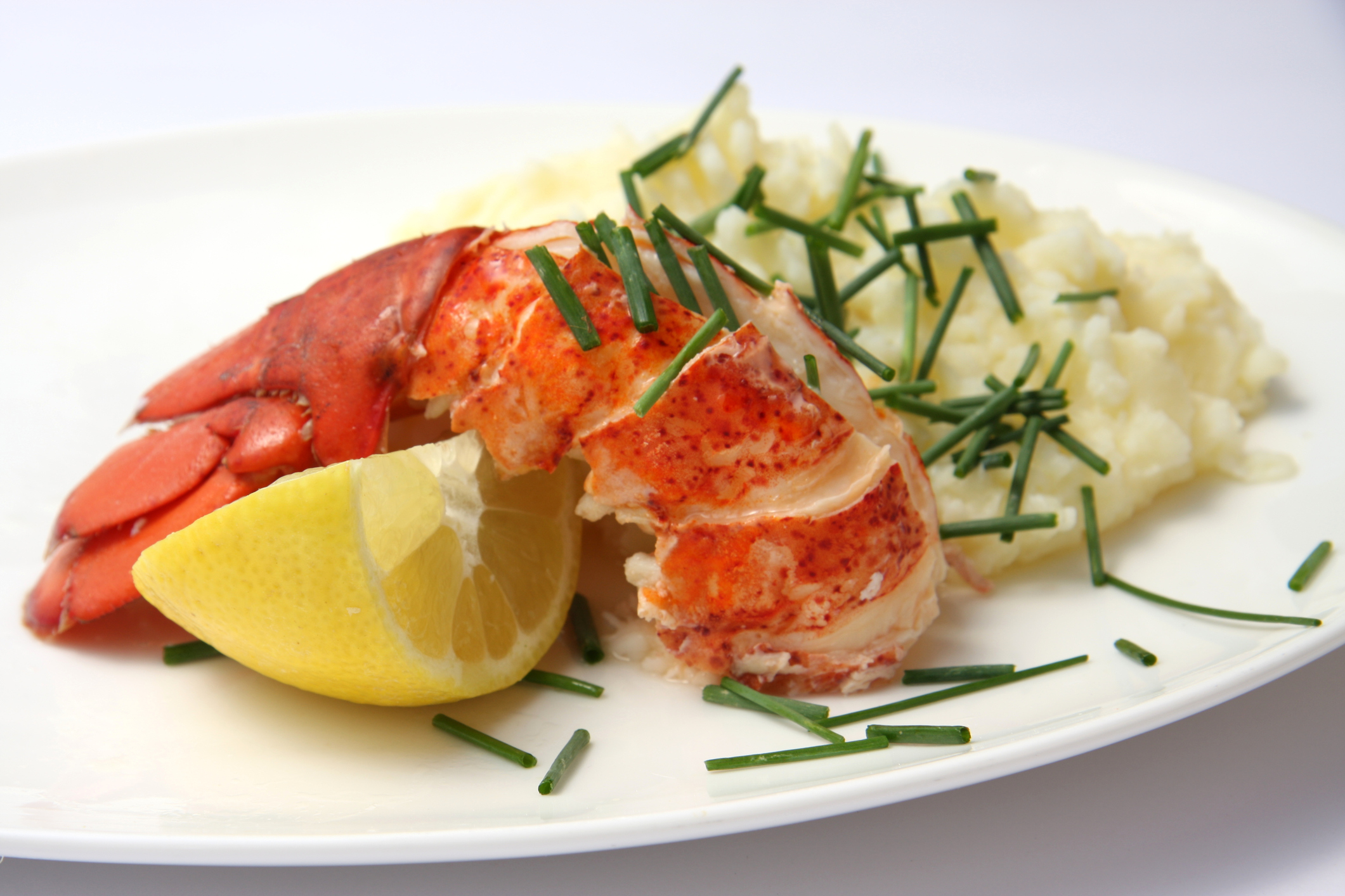 Boiled lobster with mashed potato served on a plate.