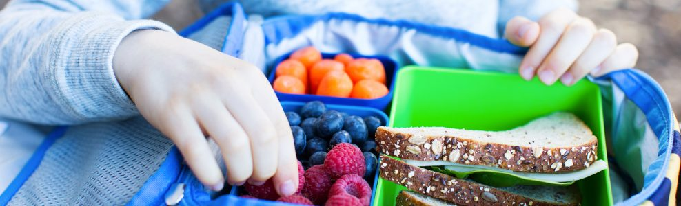 A lunch box filled with a sandwich, fresh berries and carrots.